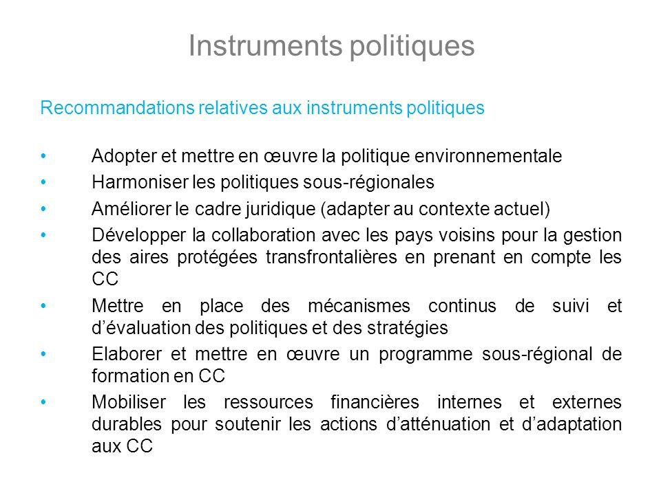 Instruments politiques Recommandations relatives aux instruments politiques Adopter et mettre en œuvre la politique environnementale Harmoniser les po