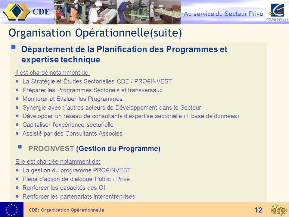 CDE Au service du Secteur Privé 12 Organisation Opérationnelle(suite) Département de la Planification des Programmes et expertise technique Il est cha