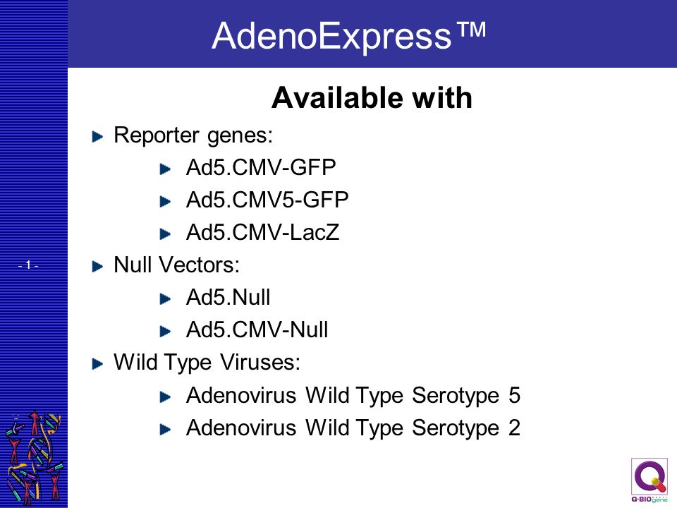 - 1 - AdenoExpress Available with Reporter genes: Ad5.CMV-GFP Ad5.CMV5-GFP Ad5.CMV-LacZ Null Vectors: Ad5.Null Ad5.CMV-Null Wild Type Viruses: Adenovi