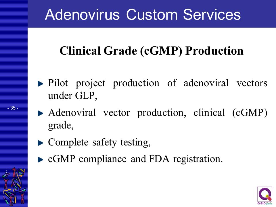 - 35 - Adenovirus Custom Services Clinical Grade (cGMP) Production Pilot project production of adenoviral vectors under GLP, Adenoviral vector product