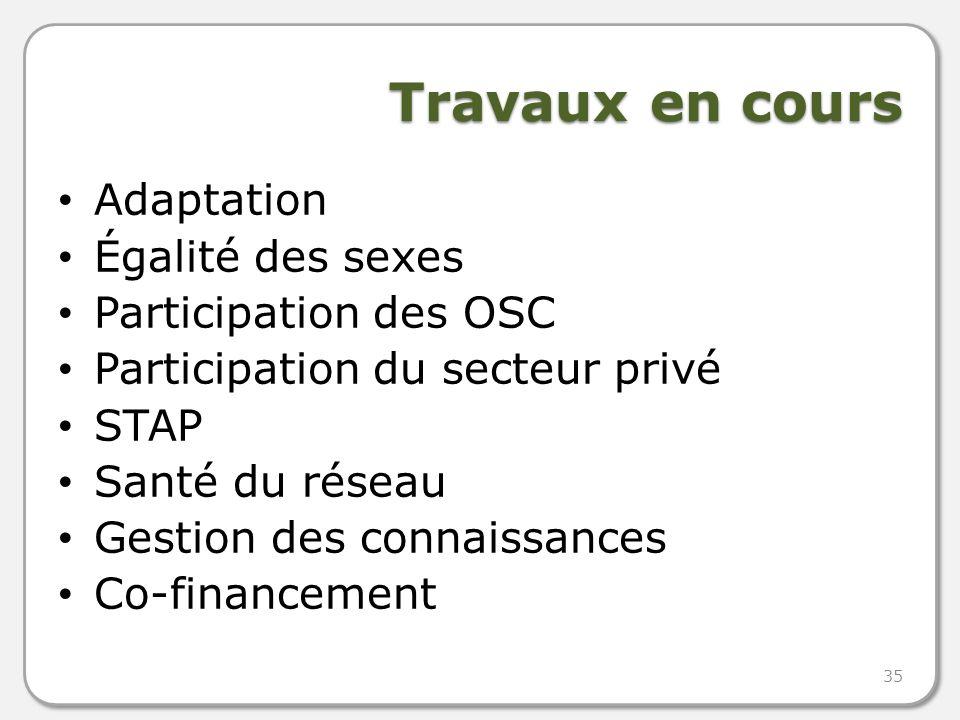 Travaux en cours Adaptation Égalité des sexes Participation des OSC Participation du secteur privé STAP Santé du réseau Gestion des connaissances Co-financement 35