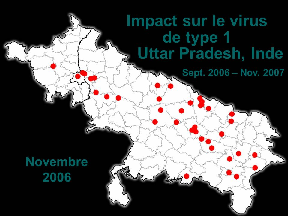 Novembre 2006 Impact sur le virus de type 1 Uttar Pradesh, Inde Sept. 2006 – Nov. 2007