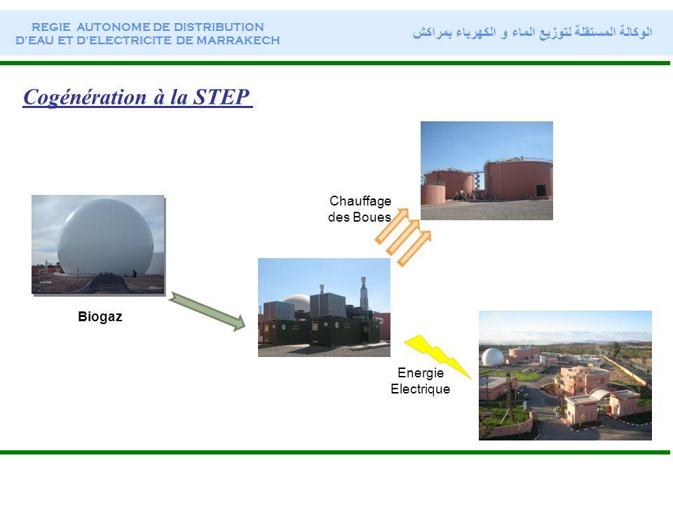 Cogénération à la STEP Biogaz Energie Electrique Chauffage des Boues REGIE AUTONOME DE DISTRIBUTION DEAU ET DELECTRICITE DE MARRAKECH الوكالة المستقلة
