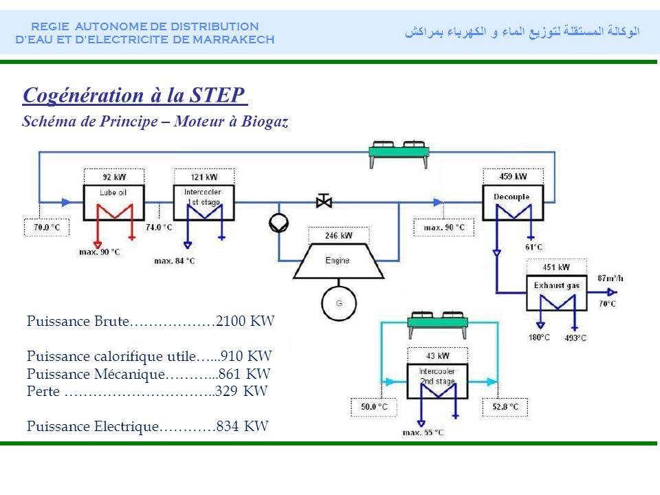 Cogénération à la STEP Schéma de Principe – Moteur à Biogaz Puissance Brute………………2100 KW Puissance calorifique utile…...910 KW Puissance Mécanique……….
