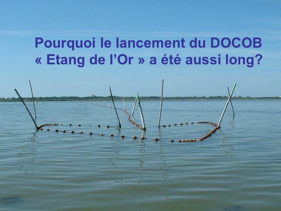 Pourquoi le lancement du DOCOB « Etang de lOr » a été aussi long?