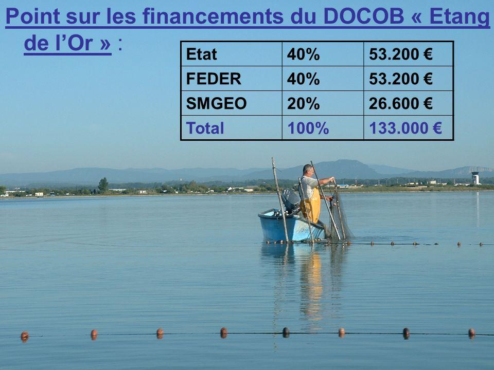 Point sur les financements du DOCOB « Etang de lOr » : Etat40%53.200 FEDER40%53.200 SMGEO20%26.600 Total100%133.000