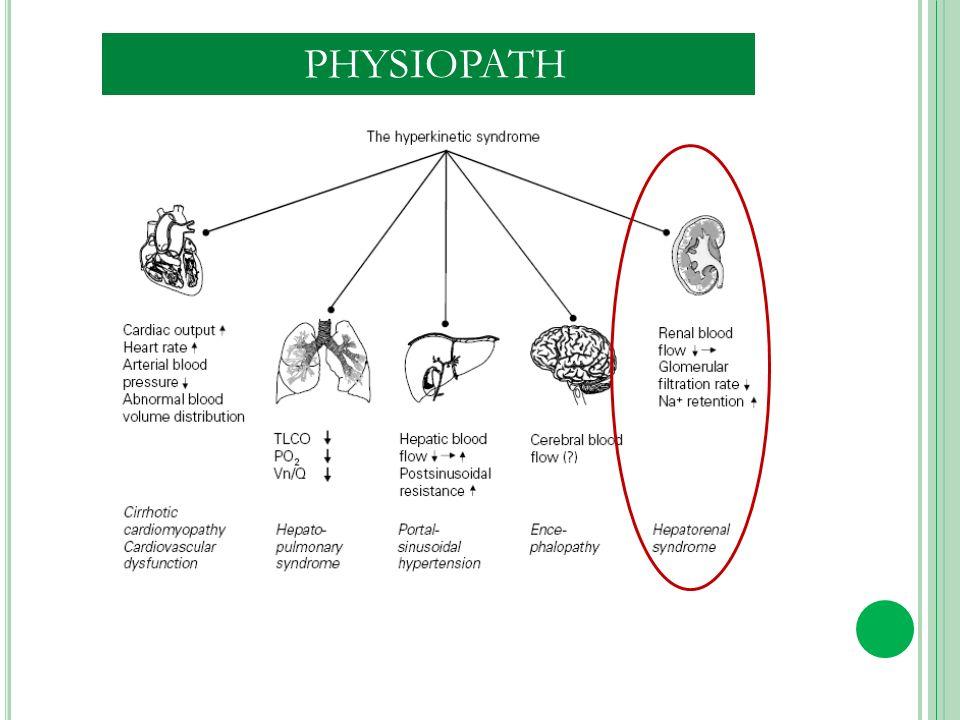 CIRRHOSE Activation du S ENOS/NO dans Les artères splanchniques Activation neuro-hormonale SNS,SRAA,argenine vasopressine Diminution de la perfusion rénale Vasoconstriction rénale Baisse du débit de filtration glomérulaire Rétention hydro sodée SYNDROME HEPATORENAL