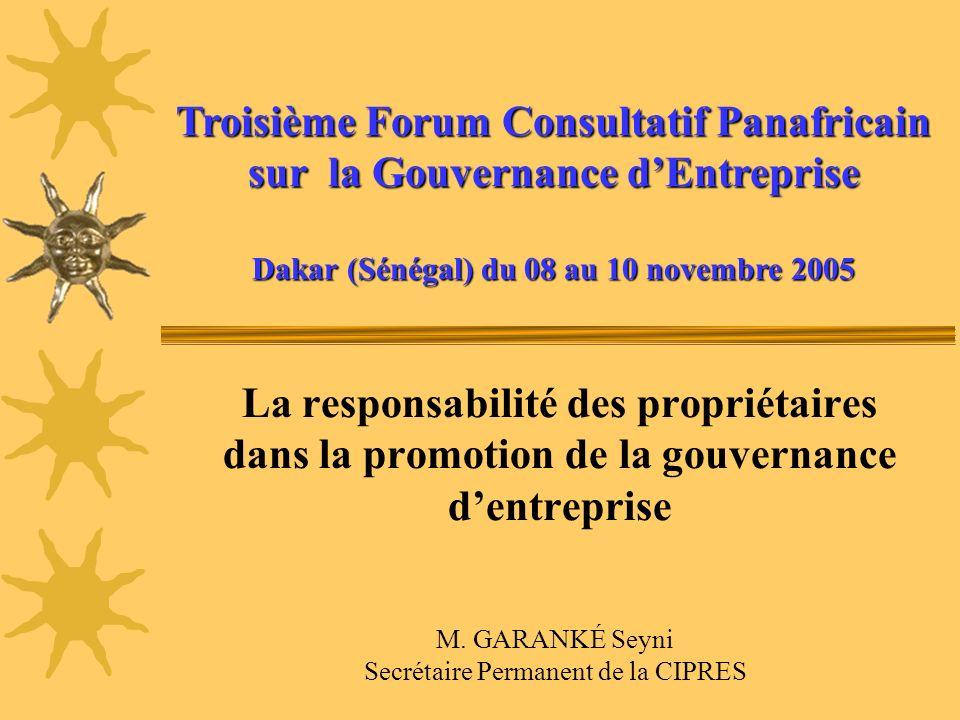 La responsabilité des propriétaires dans la promotion de la gouvernance dentreprise Troisième Forum Consultatif Panafricain sur la Gouvernance dEntrep