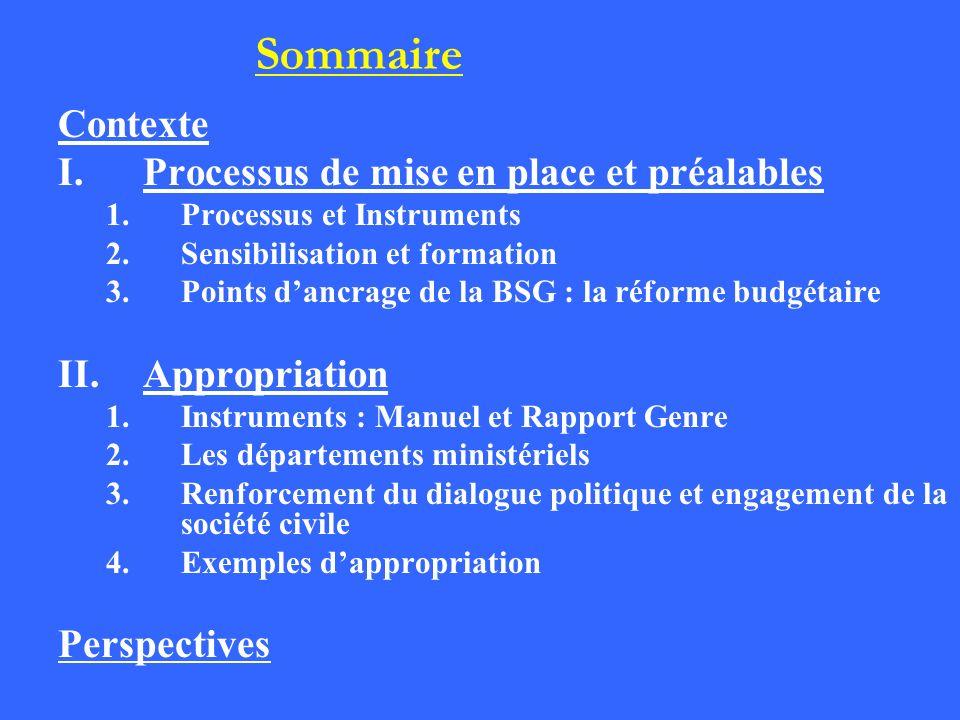 Contexte I.Processus de mise en place et préalables 1.Processus et Instruments 2.Sensibilisation et formation 3.Points dancrage de la BSG : la réforme