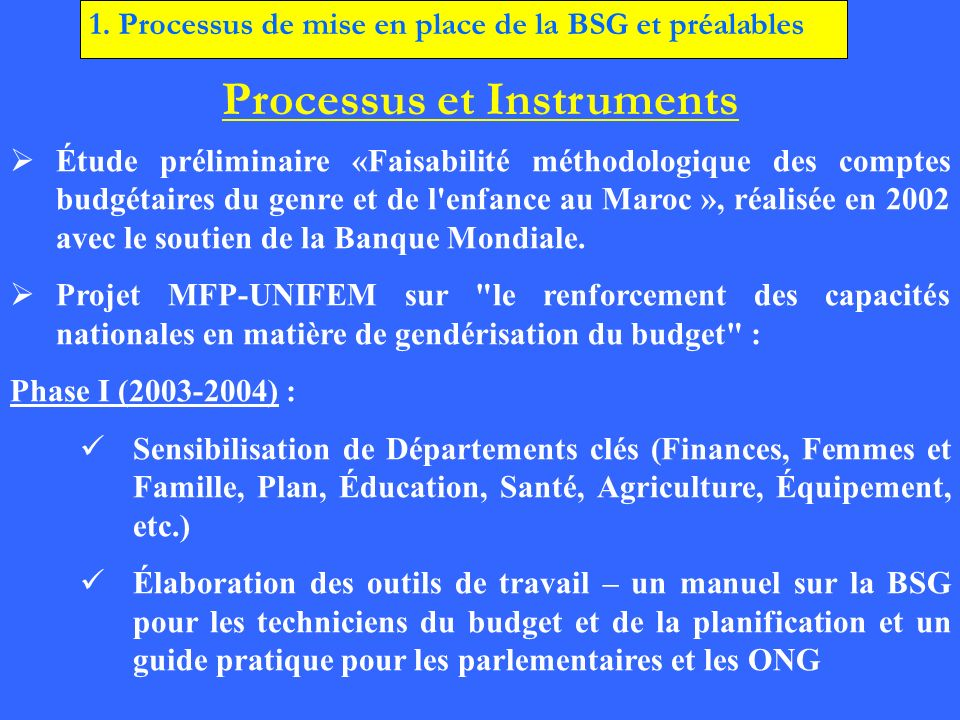 Processus et Instruments Phase II (2005-2008) : En cours Élaboration participative (17 départements) du Rapport Genre accompagnant la Loi de Finances depuis 2005.