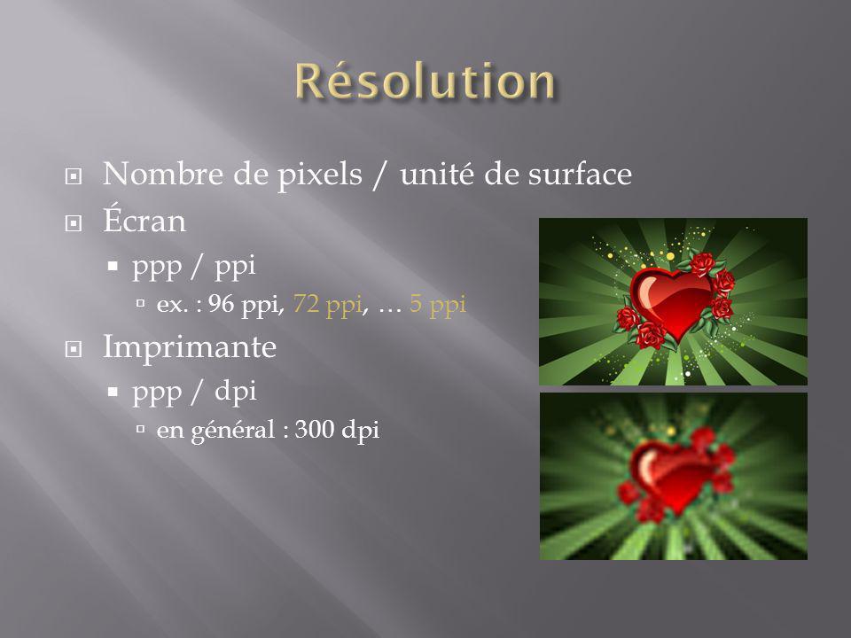Nombre de pixels / unité de surface Écran ppp / ppi ex. : 96 ppi, 72 ppi, … 5 ppi Imprimante ppp / dpi en général : 300 dpi