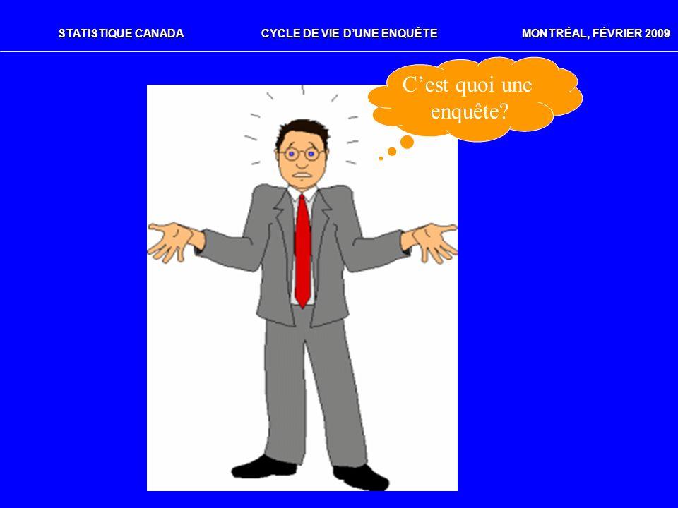 STATISTIQUE CANADACYCLE DE VIE DUNE ENQUÊTE MONTRÉAL, FÉVRIER 2009 Cest quoi une enquête?