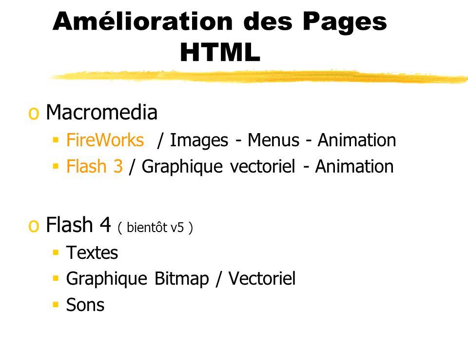 Macromedia / Flash 4 oAnimation succession d images et de scènes Interpolation oActions Interactivité ( clic souris....) Exploitation pour menus, pages, URL,...