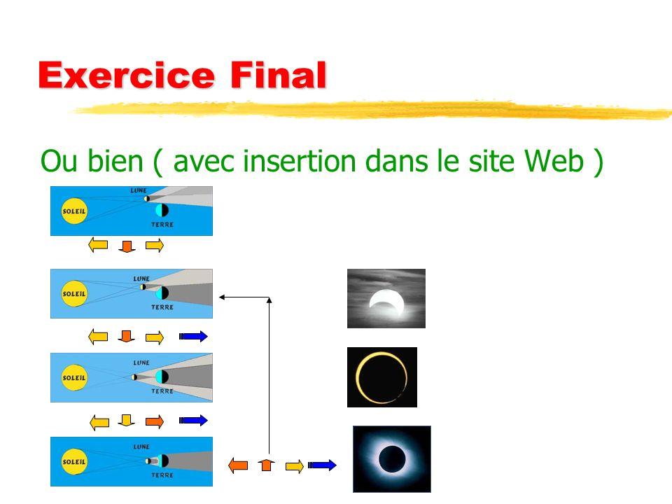 Exercice Final Ou bien ( avec insertion dans le site Web )