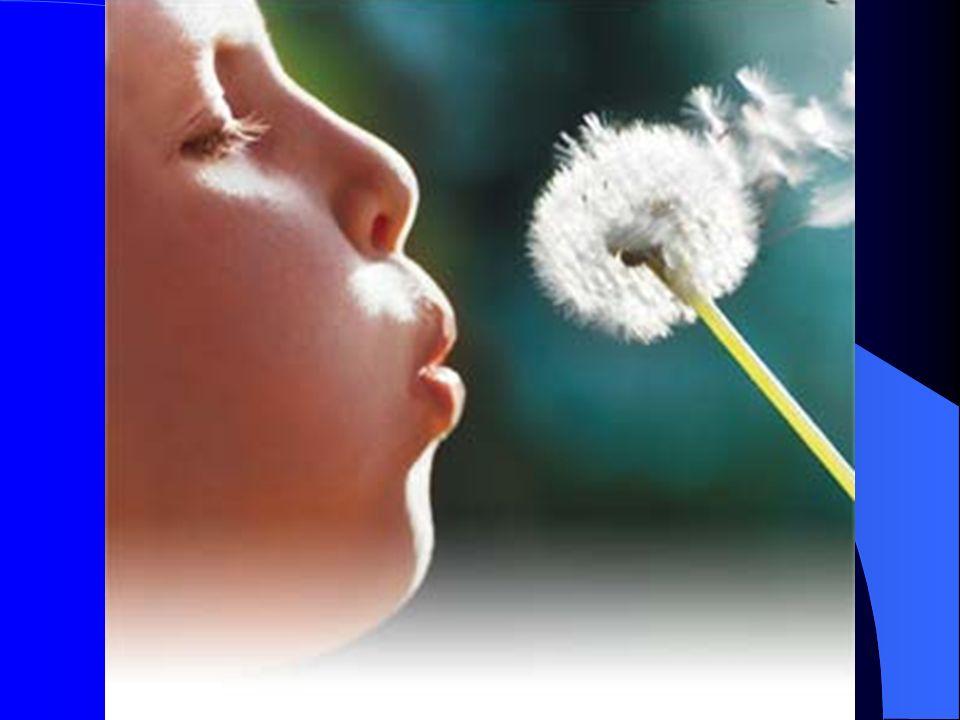 Asthme professionnel : Diagnostics différentiels : – BPCO – bronchiolite chronique – « Organic dust toxic syndrome » (ODTS) – SIOC-SHSCM …