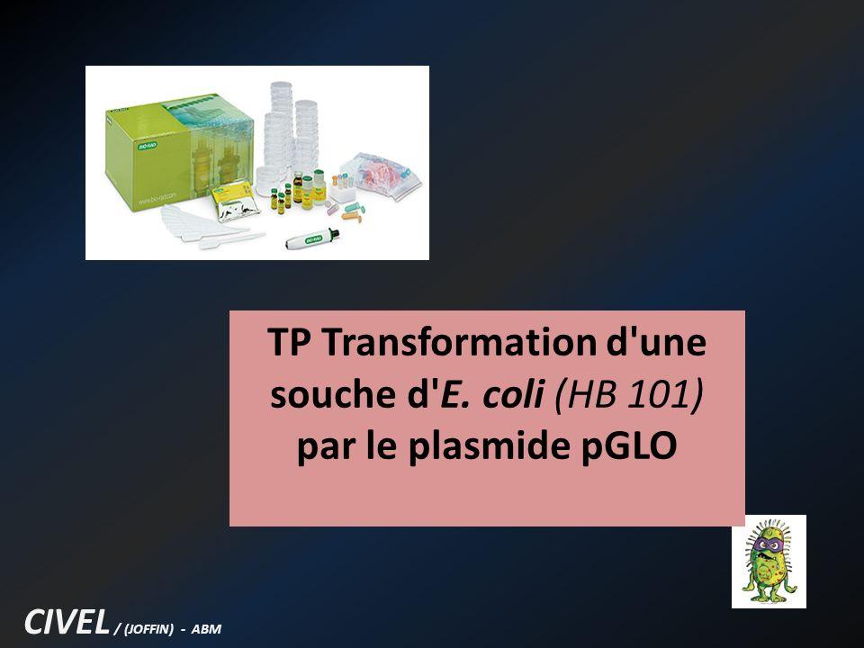 Objectifs : - Réaliser la transformation de bactérie, en leur faisant ingérer un plasmide.