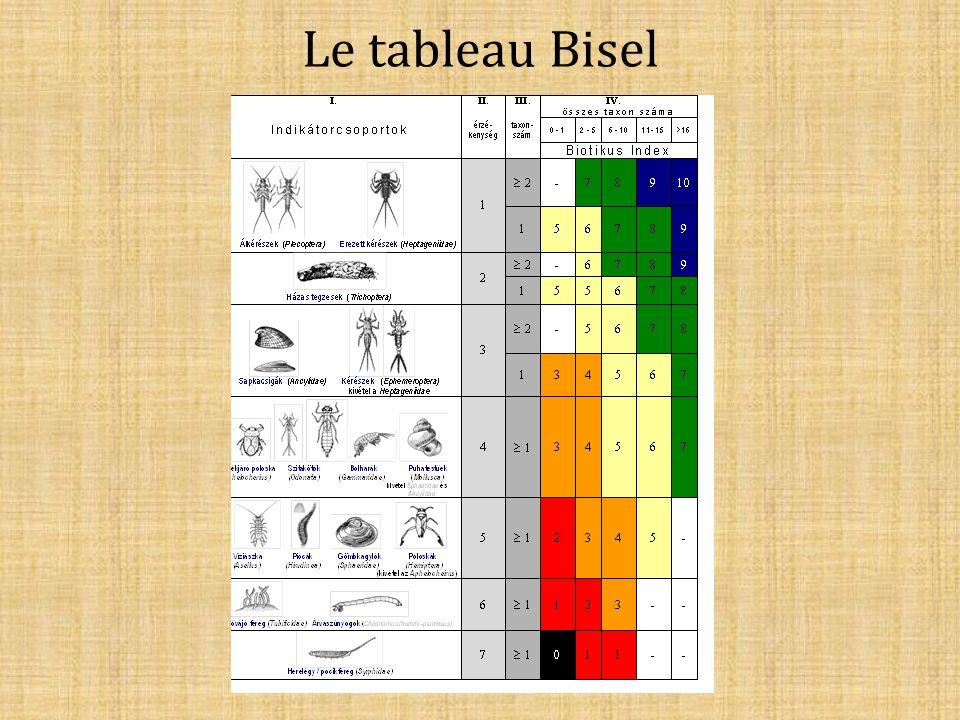 Le tableau Bisel