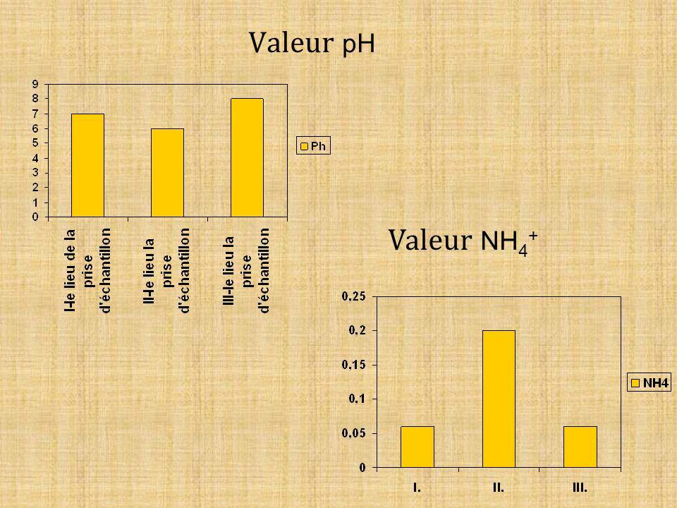Valeur pH Valeur NH 4 +