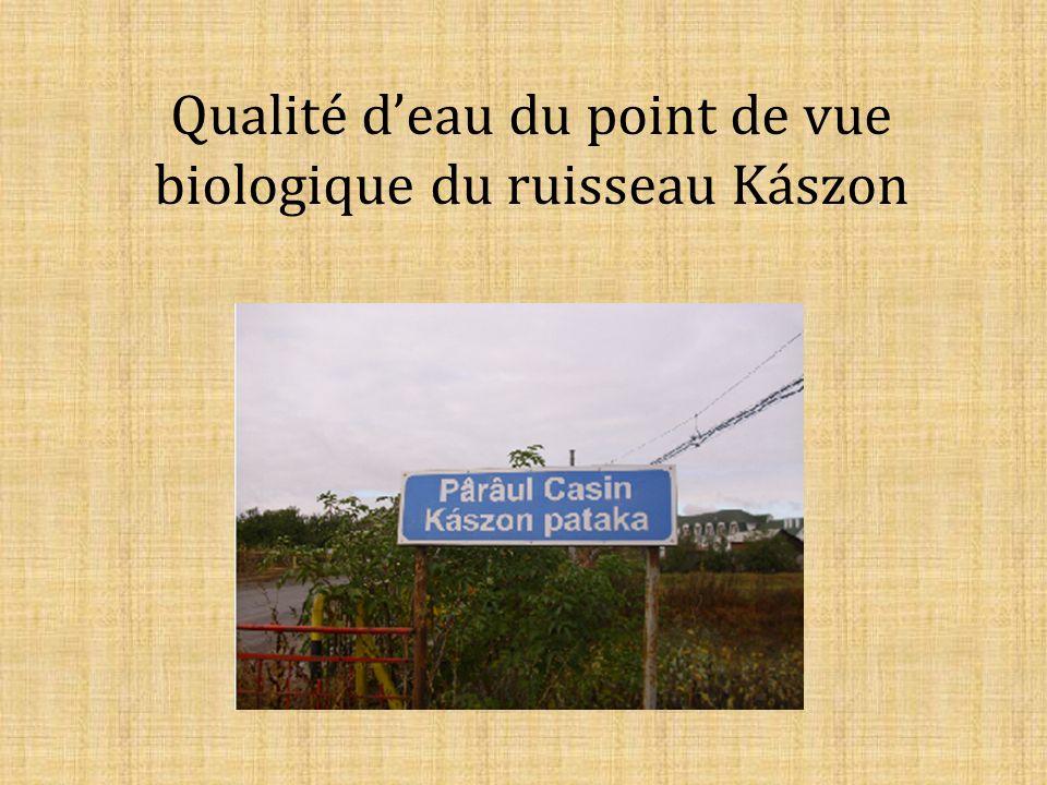 Qualité deau du point de vue biologique du ruisseau Kászon