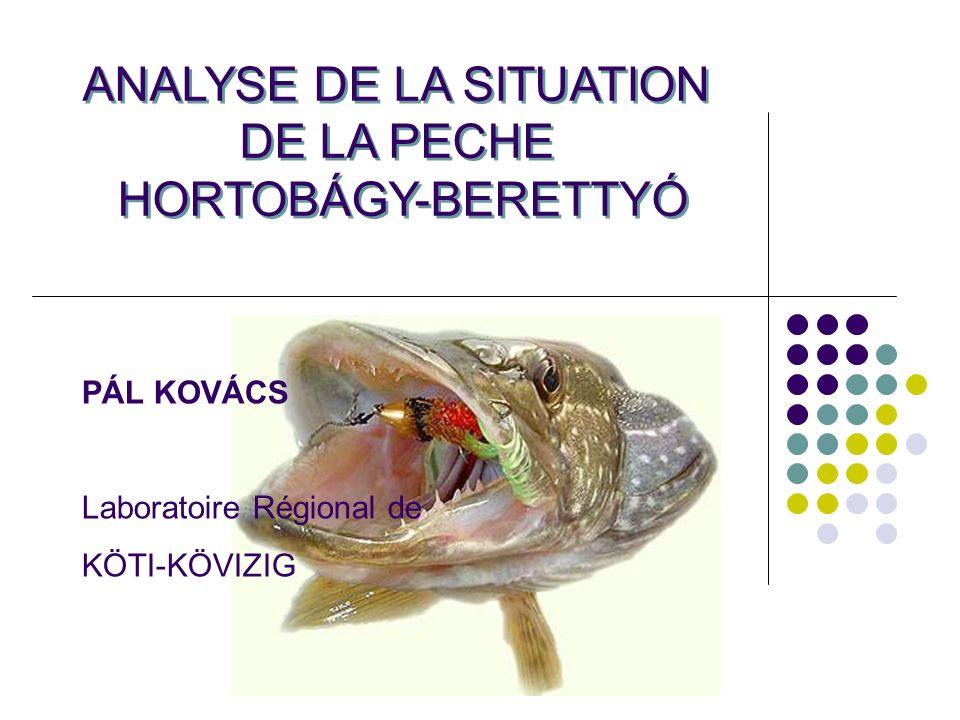 MEZŐTÚR, 2008.04.02.KÖTI-KÖVIIZIG Regionális Laboratórium Kovács Pál halbiológus ANALYSE DE LA SITUATION DE LA PECHE POUR LA RIVIERE HORTOBÁGY-BERETTYÓ Collecte préalable dinformations, procédure de permission Analyse conformément au protocole de pêche de la DIRECTIVE CADRE sur lEAU (VKI).