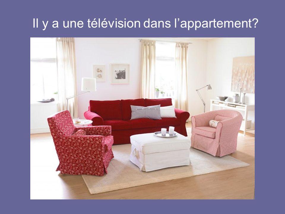 Il y a une télévision dans lappartement?