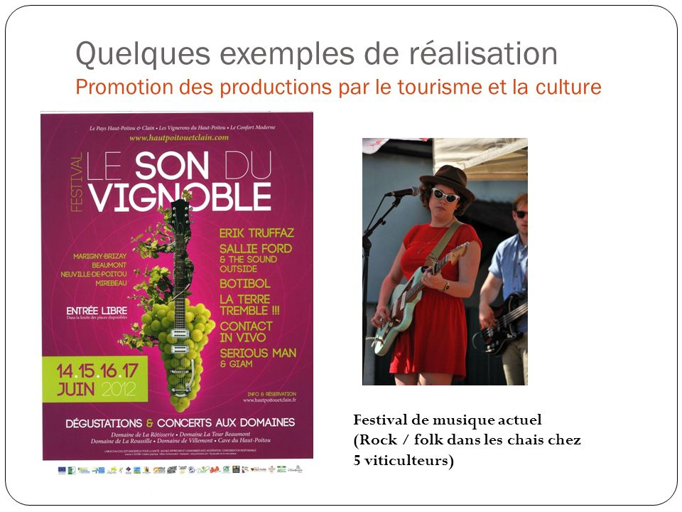 Quelques exemples de réalisation Promotion des productions par le tourisme et la culture Festival de musique actuel (Rock / folk dans les chais chez 5 viticulteurs)