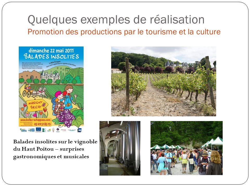 Quelques exemples de réalisation Promotion des productions par le tourisme et la culture Balades insolites sur le vignoble du Haut Poitou – surprises gastronomiques et musicales