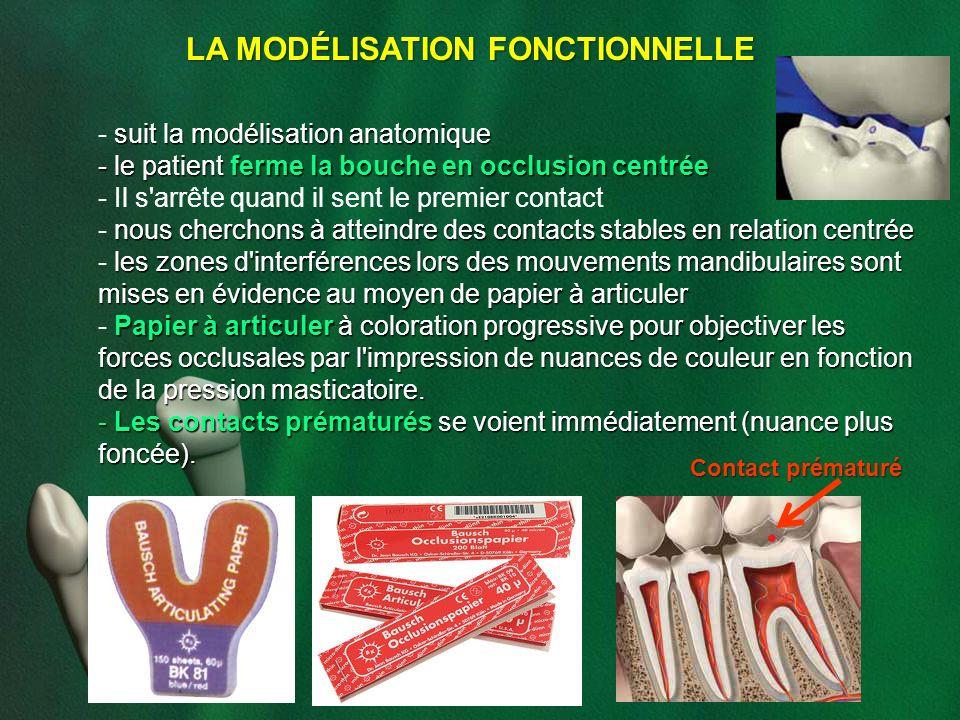 LA MODÉLISATION FONCTIONNELLE suit la modélisation anatomique - suit la modélisation anatomique - le patient ferme la bouche en occlusion centrée - Il