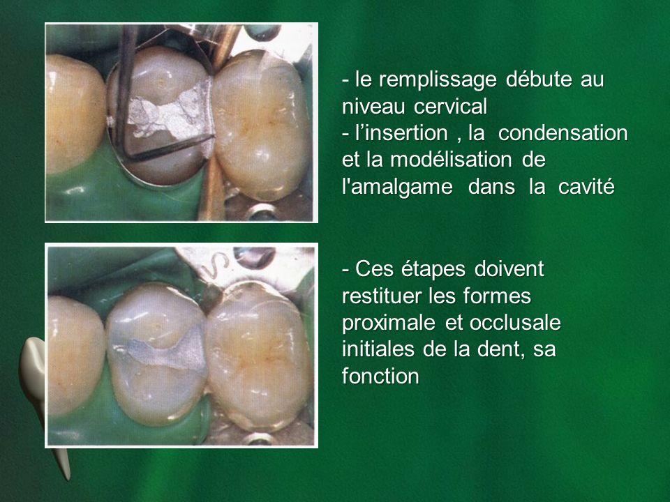 le remplissage débute au niveau cervical - le remplissage débute au niveau cervical - linsertion, la condensation et la modélisation de l'amalgame dan