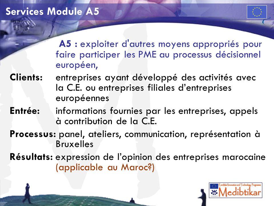 M Services Module A5 A5 : exploiter d autres moyens appropriés pour faire participer les PME au processus décisionnel européen, Clients:entreprises ayant développé des activités avec la C.E.