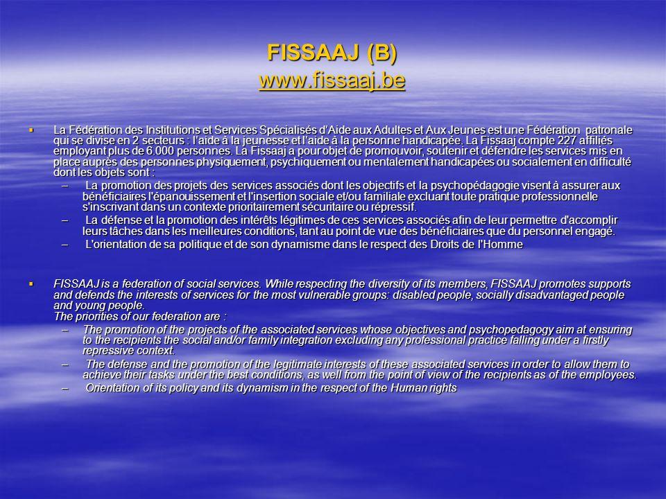 FISSAAJ (B) www.fissaaj.be www.fissaaj.be La Fédération des Institutions et Services Spécialisés dAide aux Adultes et Aux Jeunes est une Fédération pa