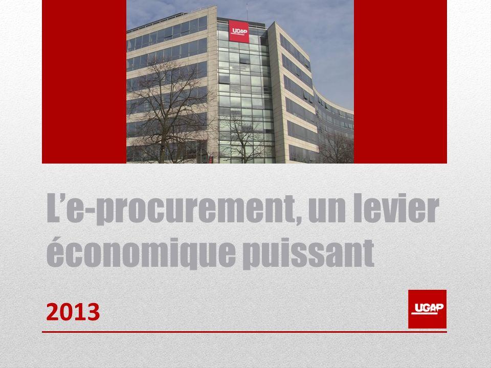 Le-procurement, un levier économique puissant 2013