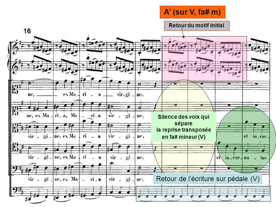Silence des voix qui sépare la reprise transposée en fa# mineur (V ) Retour du motif initial Retour de lécriture sur pédale (V) A (sur V, fa# m) 16