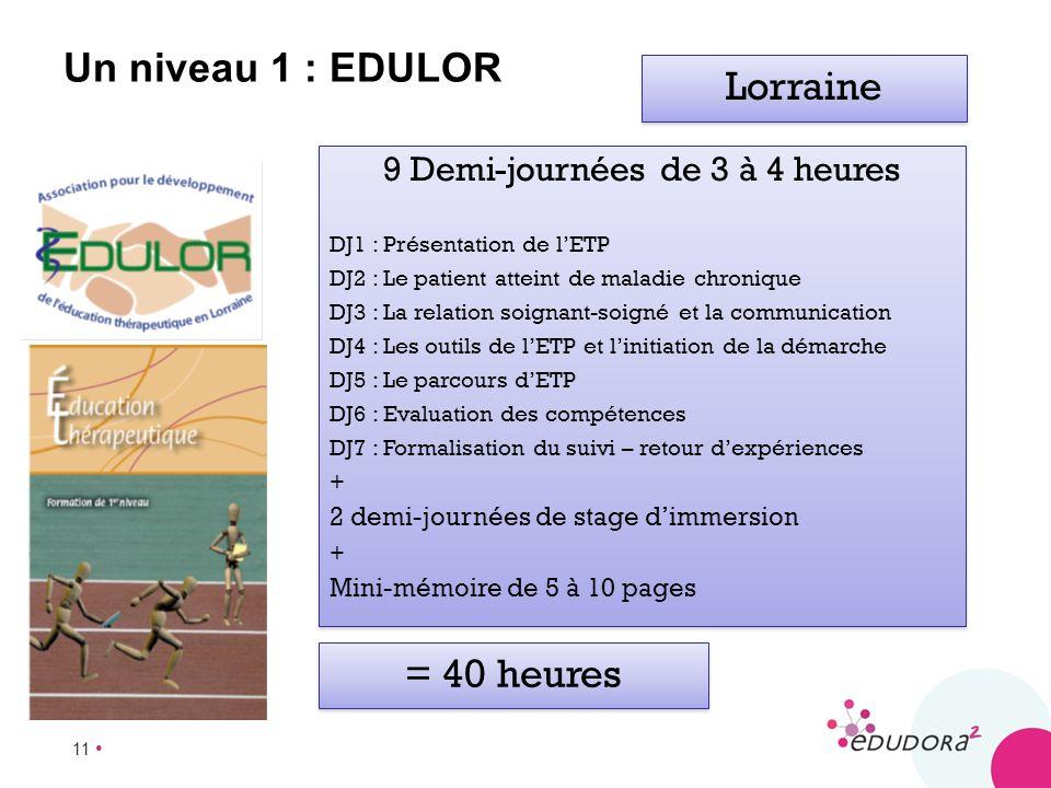 11 Un niveau 1 : EDULOR 9 Demi-journées de 3 à 4 heures DJ1 : Présentation de lETP DJ2 : Le patient atteint de maladie chronique DJ3 : La relation soi