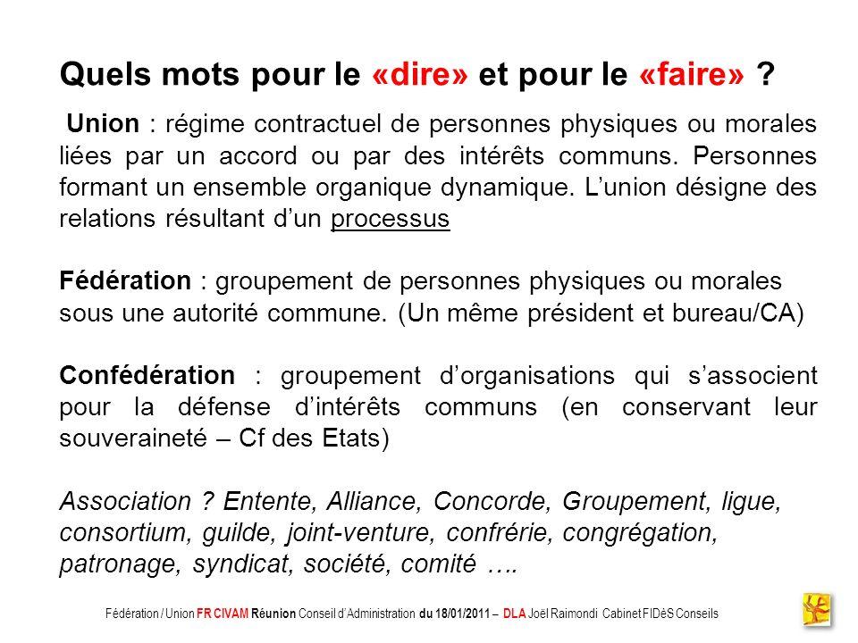 Association CADIFE : Quel Avenir ? - Restitution DLA du 18/05/2010 à Clermont lHérault - Joël Raimondi Cabinet FIDèS CONSEILS et Peter Ulrich Quels mo