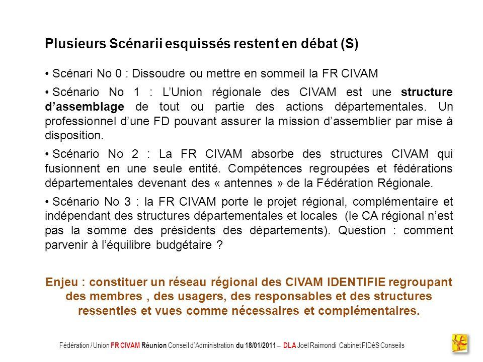 Association CADIFE : Quel Avenir ? - Restitution DLA du 18/05/2010 à Clermont lHérault - Joël Raimondi Cabinet FIDèS CONSEILS et Peter Ulrich Plusieur