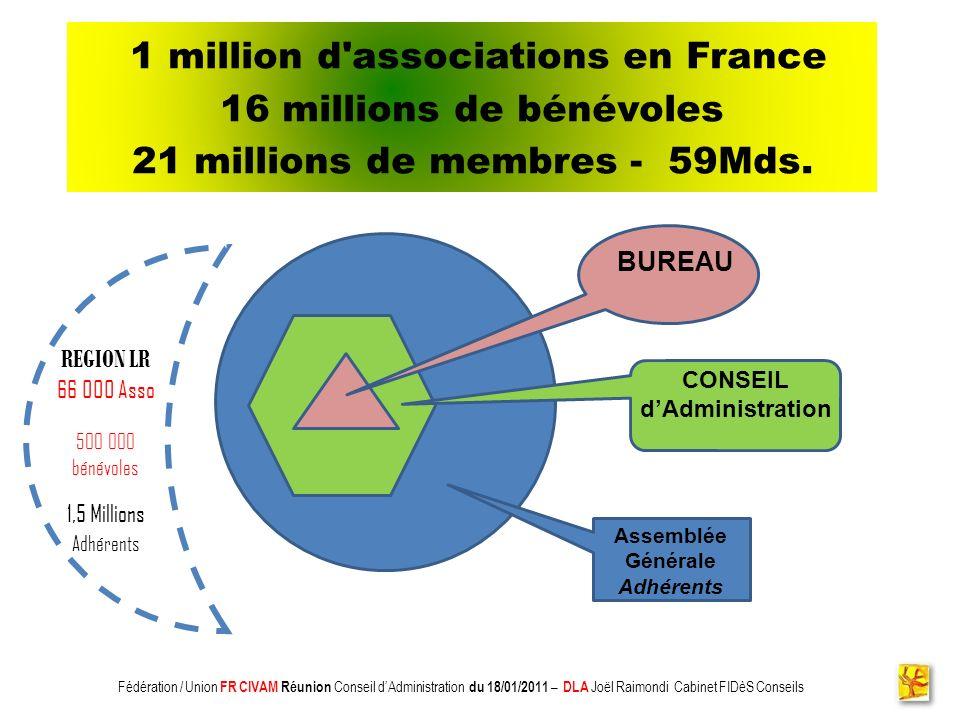 Association CADIFE : Quel Avenir ? - Restitution DLA du 18/05/2010 à Clermont lHérault - Joël Raimondi Cabinet FIDèS CONSEILS et Peter Ulrich 1 millio