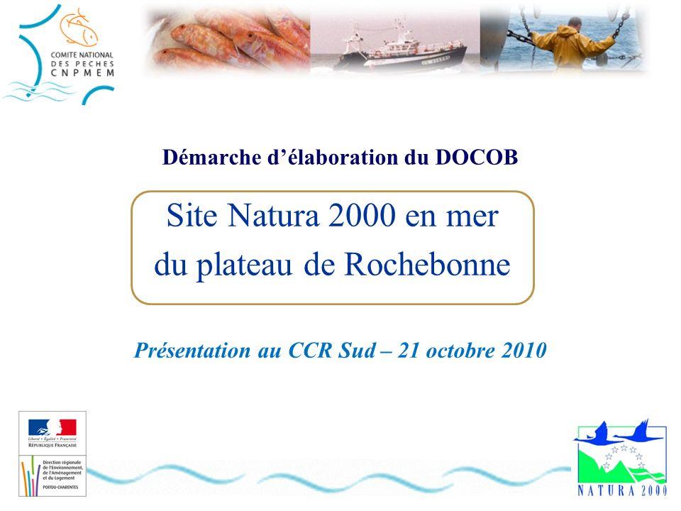 Démarche délaboration du DOCOB Présentation au CCR Sud – 21 octobre 2010 Site Natura 2000 en mer du plateau de Rochebonne