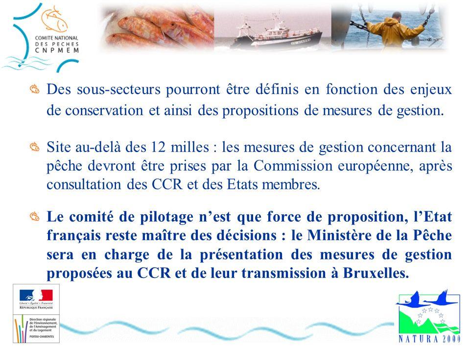 Des sous-secteurs pourront être définis en fonction des enjeux de conservation et ainsi des propositions de mesures de gestion. Site au-delà des 12 mi
