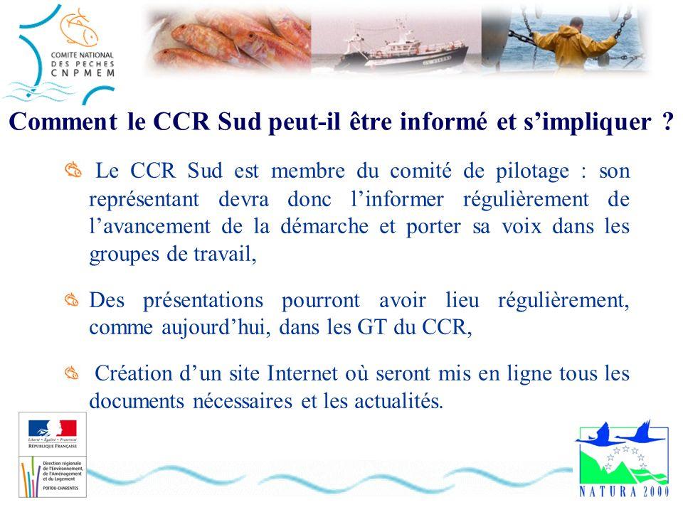 Comment le CCR Sud peut-il être informé et simpliquer ? Le CCR Sud est membre du comité de pilotage : son représentant devra donc linformer régulièrem