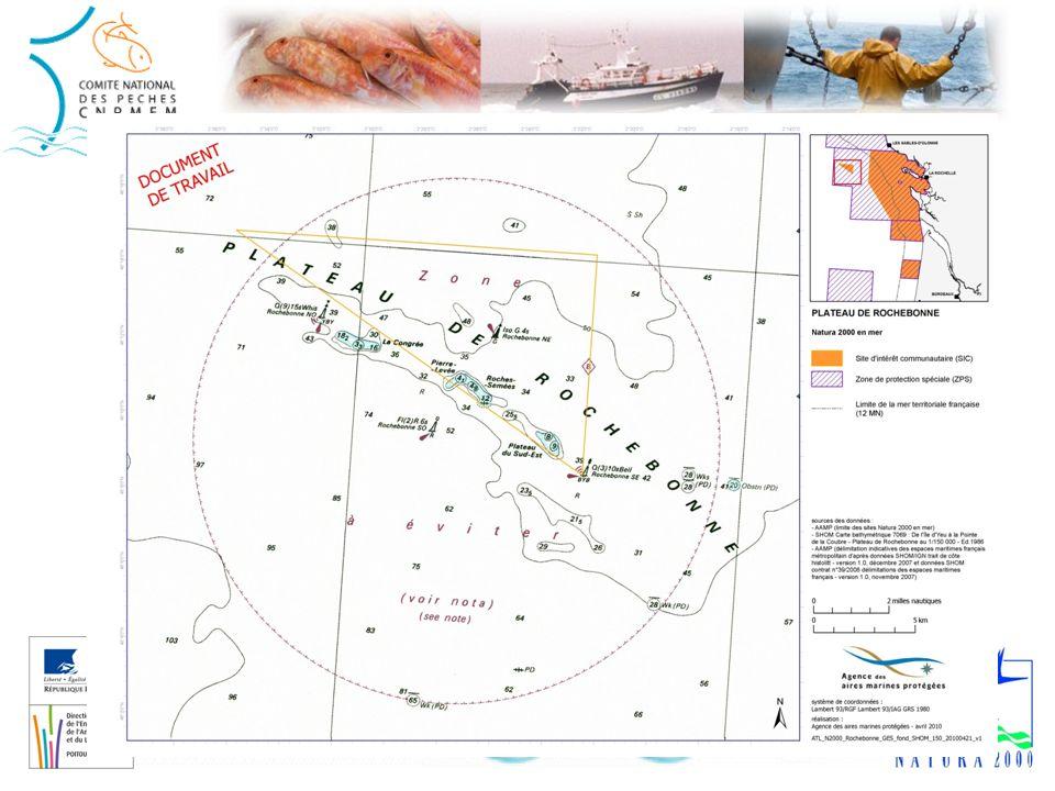 Fonctionnement des sites Natura 2000 en France Une fois le site désigné à la commission européenne, il doit être mis en gestion : Installation dun comité de gestion (le « comité de pilotage ») : il regroupe tous les acteurs concernés par le site (usagers, services de lEtat, scientifiques, association de protection de la nature, …), dont le CCR Sud, Désignation dune structure en charge danimer la réflexion du comité de pilotage : « lopérateur », Rédaction dun plan de gestion : le « document dobjectifs » par lopérateur daprès les instructions du comité de pilotage.