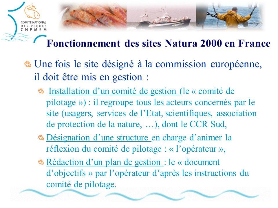 Fonctionnement des sites Natura 2000 en France Une fois le site désigné à la commission européenne, il doit être mis en gestion : Installation dun com