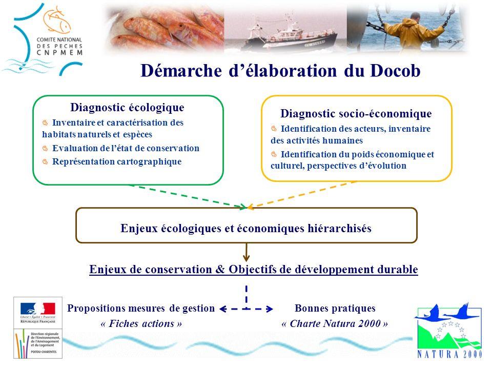 Démarche délaboration du Docob Diagnostic écologique Inventaire et caractérisation des habitats naturels et espèces Evaluation de létat de conservatio