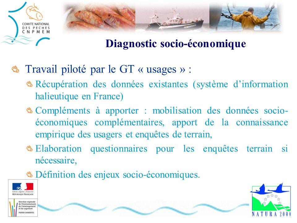 Diagnostic socio-économique Travail piloté par le GT « usages » : Récupération des données existantes (système dinformation halieutique en France) Com