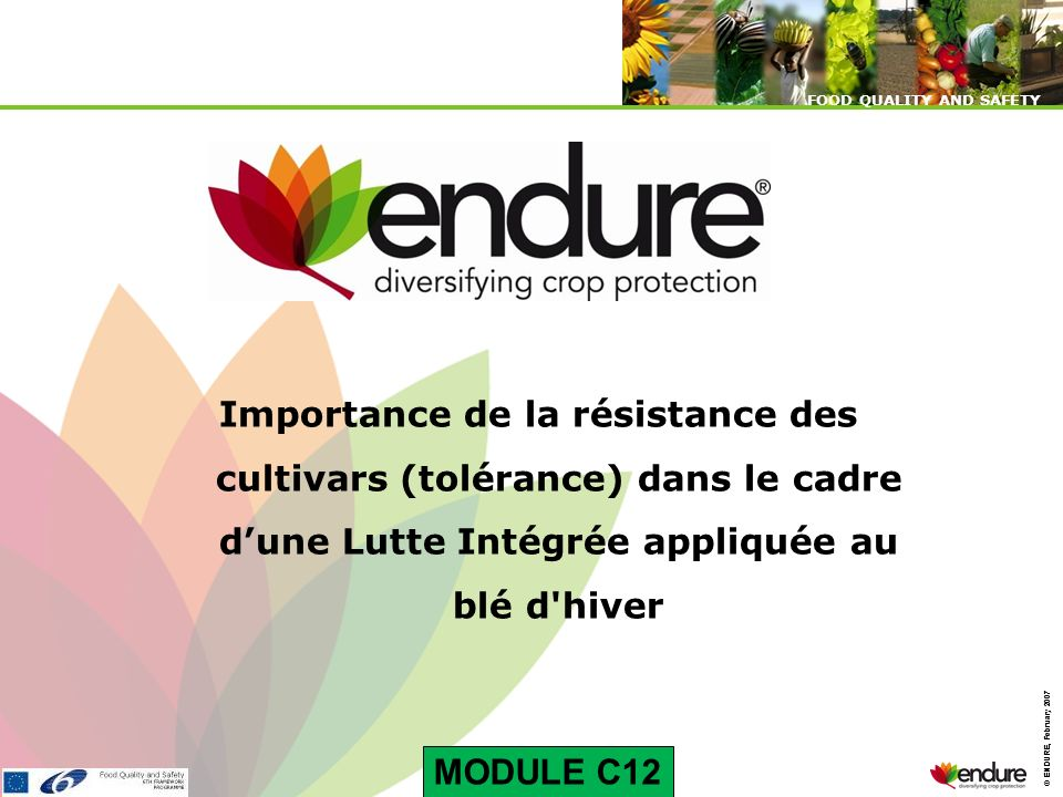 © ENDURE, February 2007 FOOD QUALITY AND SAFETY © ENDURE, February 2007 FOOD QUALITY AND SAFETY Importance de la résistance des cultivars (tolérance)