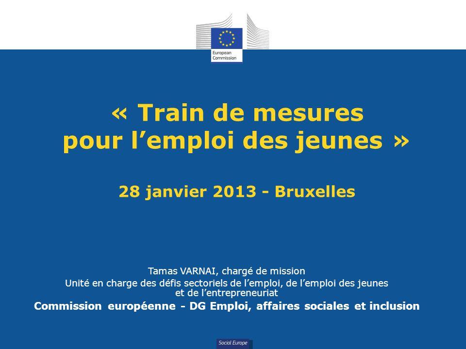 Social Europe « Train de mesures pour lemploi des jeunes » 28 janvier 2013 - Bruxelles Tamas VARNAI, chargé de mission Unité en charge des défis secto