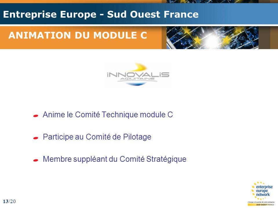Entreprise Europe - Sud Ouest France 13/20 ANIMATION DU MODULE C Anime le Comité Technique module C Participe au Comité de Pilotage Membre suppléant du Comité Stratégique