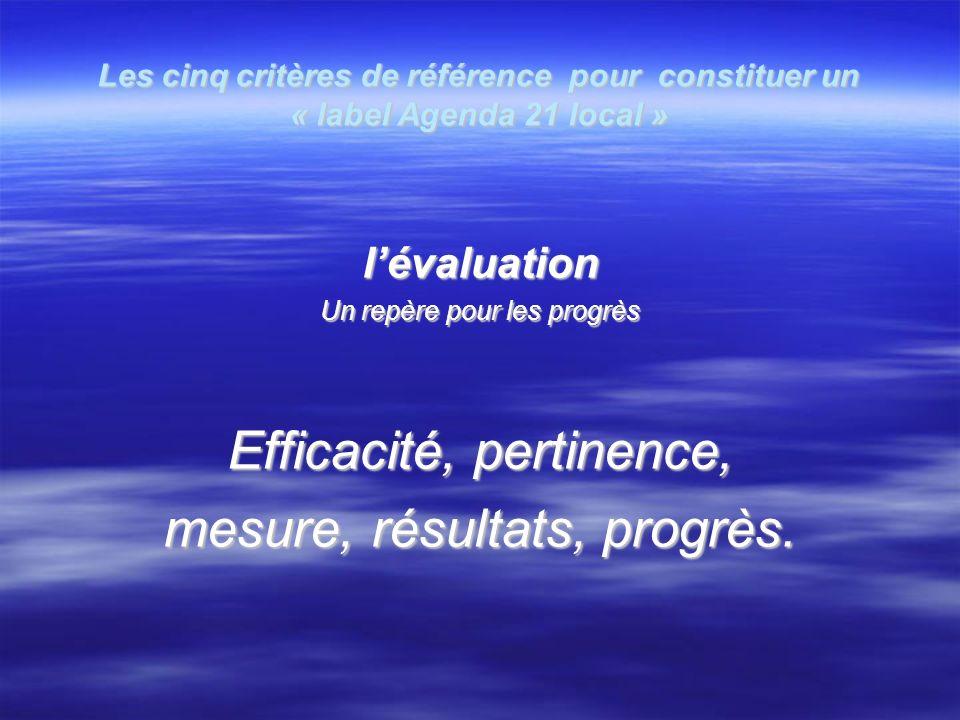 Les cinq critères de référence pour constituer un « label Agenda 21 local » lévaluation Un repère pour les progrès Efficacité, pertinence, mesure, résultats, progrès.