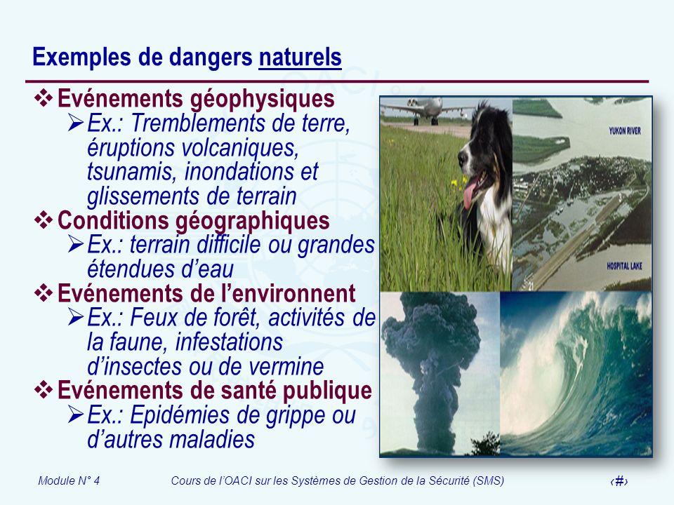 Module N° 4Cours de lOACI sur les Systèmes de Gestion de la Sécurité (SMS) 9 Exemples de dangers naturels Evénements géophysiques Ex.: Tremblements de