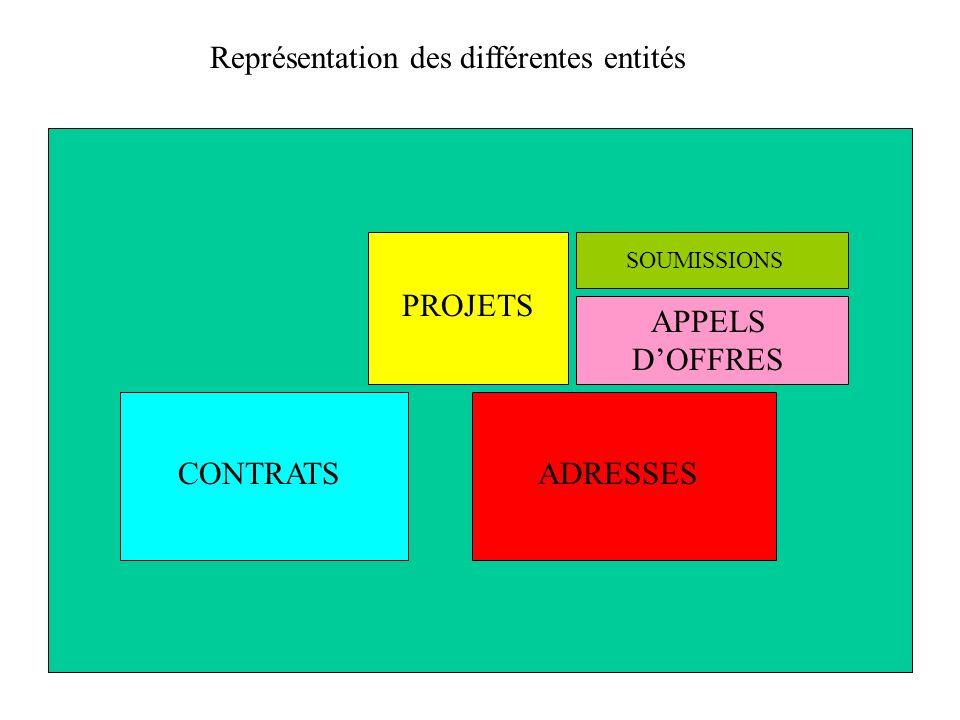 ADRESSESCONTRATS PROJETS APPELS DOFFRES SOUMISSIONS Représentation des différentes entités